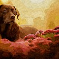 The Labrador by MJ Arts Collection