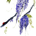 The Ladybird And The Wisteria by Sibby S