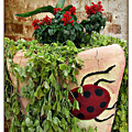 the Ladybug by Joan  Minchak