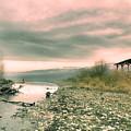 The Lake Walker by Tara Turner