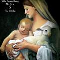 The Lamb Of God by Joyce Geleynse