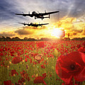 The Lancasters by J Biggadike