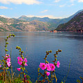 The Landscape Of The Bay Of Kotor In Montenegro. by Tatyana Gundar
