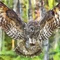 The Largest Owl by Leonardo Digenio