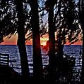 The Last Sun by Bob Johnson