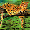 The Leopard by Arlene  Wright-Correll