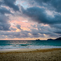 The Light On The Beach by Michael Scott