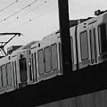 The Light Rail by Lenore Senior