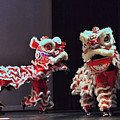 The Lion Dance Camarillo Kung Fu Club by Michael Gordon