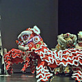 The Lion Dance Camarillo  by Michael Gordon