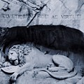 The Lion Of Lucerne by Dan Sproul