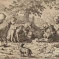 The Lion Seeks Advice by Allart Van Everdingen