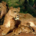 The Lions At Home by Rosa Bonheur