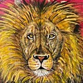 The Lions Selfie by John Rankin