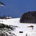 The Little Red Swiss Chalet - Winter In Switzerland by Susanne Van Hulst