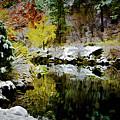 The Loch by Jon Burch Photography