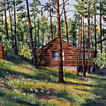 The Log Cabin by Mary Tuomi