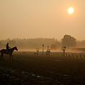 The Lone Rider Saratoga Ny by Amanda Lonergan