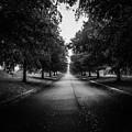 The Lone Walk by Olga Burt