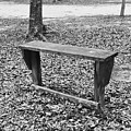 The Lonely Bench by Jennifer Sanders