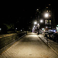 The Lonely Street By Central Park Ny by William Rogers
