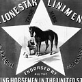 The Lonestar Liniment by Bill Cannon
