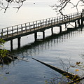 The Long Dock by Doug Johnson