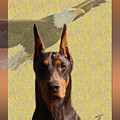 Dobermans..the Look Of The Eagle by Maria C Martinez