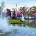 The Lynn Goldfish Pond Lynn Ma by Toby McGuire