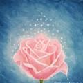 The Magical Pink Rose by Shikha Narula