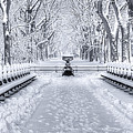 The Mall In Snow Central Park by Jerry Fornarotto