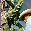 The Man And The Cactus by Blima Efraim