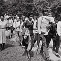 The March On Washington  Freedom Walkers by Nat Herz