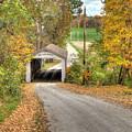 The Melcher Covered Bridge by Harold Rau