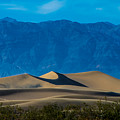 The Mesquite Dunes by Stephen Whalen