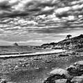 The Mewstone, Wembury Bay, Devon #view by John Edwards
