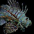 The Mighty Lion Fish by Carol F Austin