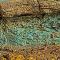 The Minerals by Stephen Whalen