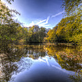 The Mirror Pond by David Pyatt