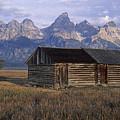 The Molton Homestead by Doug Davidson