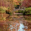 The Monet Bridge by Iris Greenwell
