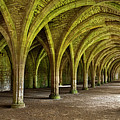 The Monks Cellarium, Fountains Abbey.  by Chris North