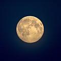 The Moon 1 by Jouko Lehto