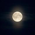 The Moon 2 by Jouko Lehto