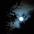 The Moon - La Luna 12 by Totto Ponce