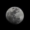The Moon - La Luna 4 by Totto Ponce