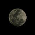 The Moon - La Luna 5 by Totto Ponce