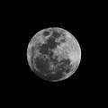 The Moon - La Luna 6 by Totto Ponce