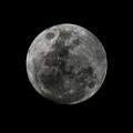The Moon - La Luna 7 by Totto Ponce