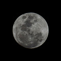 The Moon - La Luna 9 by Totto Ponce